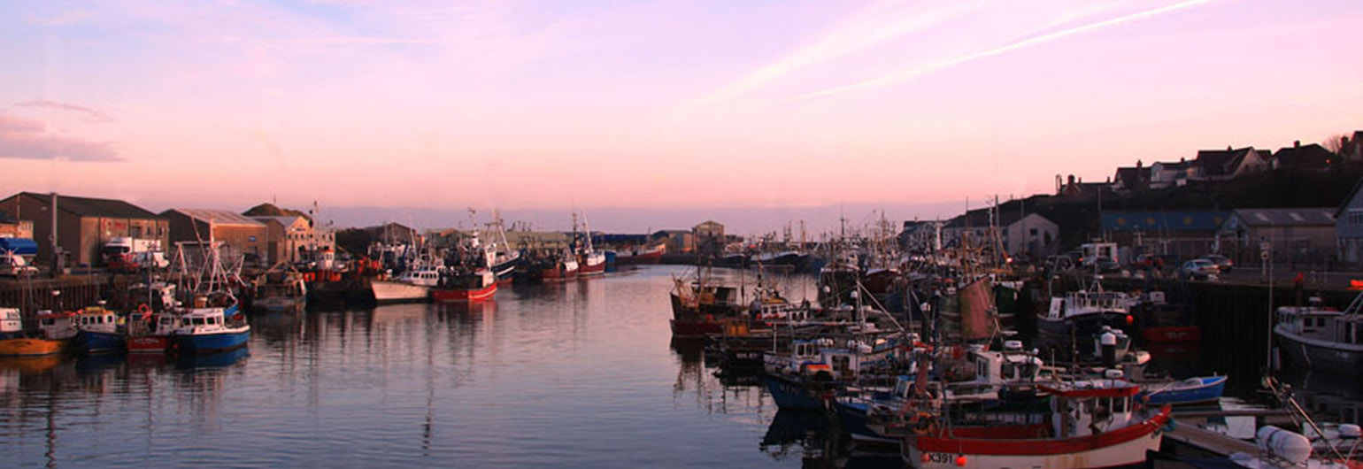 Kilkeel Harbour at Sunset